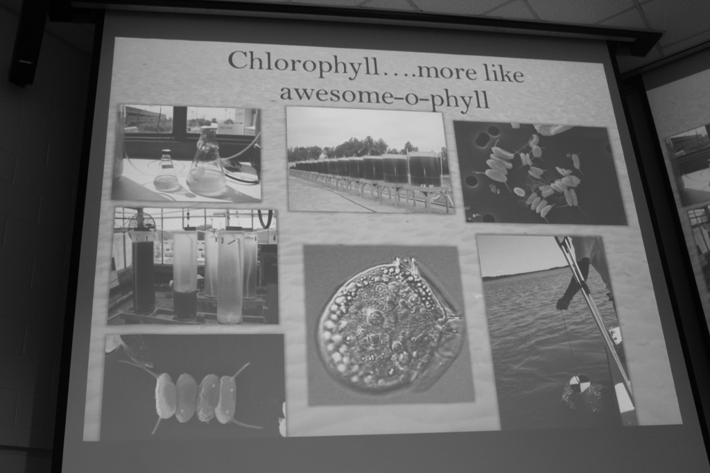 Matthew Semcheski presented this slide right after telling the story of how he came to love chlorophyll. Photo Credit / Jamie Reese