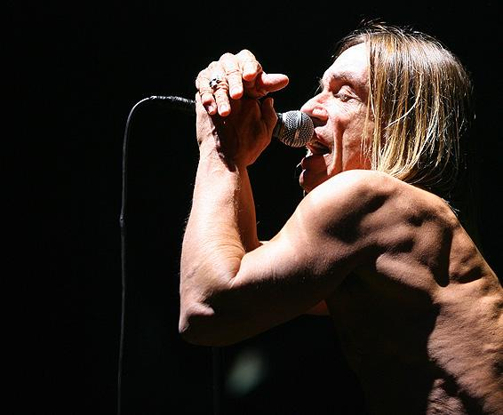 """Iggy Pop released """"Post Pop Depression"""" on March 18, 2016. Photo Courtesy / Alex Const"""