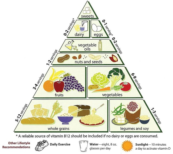 Photo Courtesy / Wikimedia Commons The food pyramid consists of a lot of foods that are often wasted.