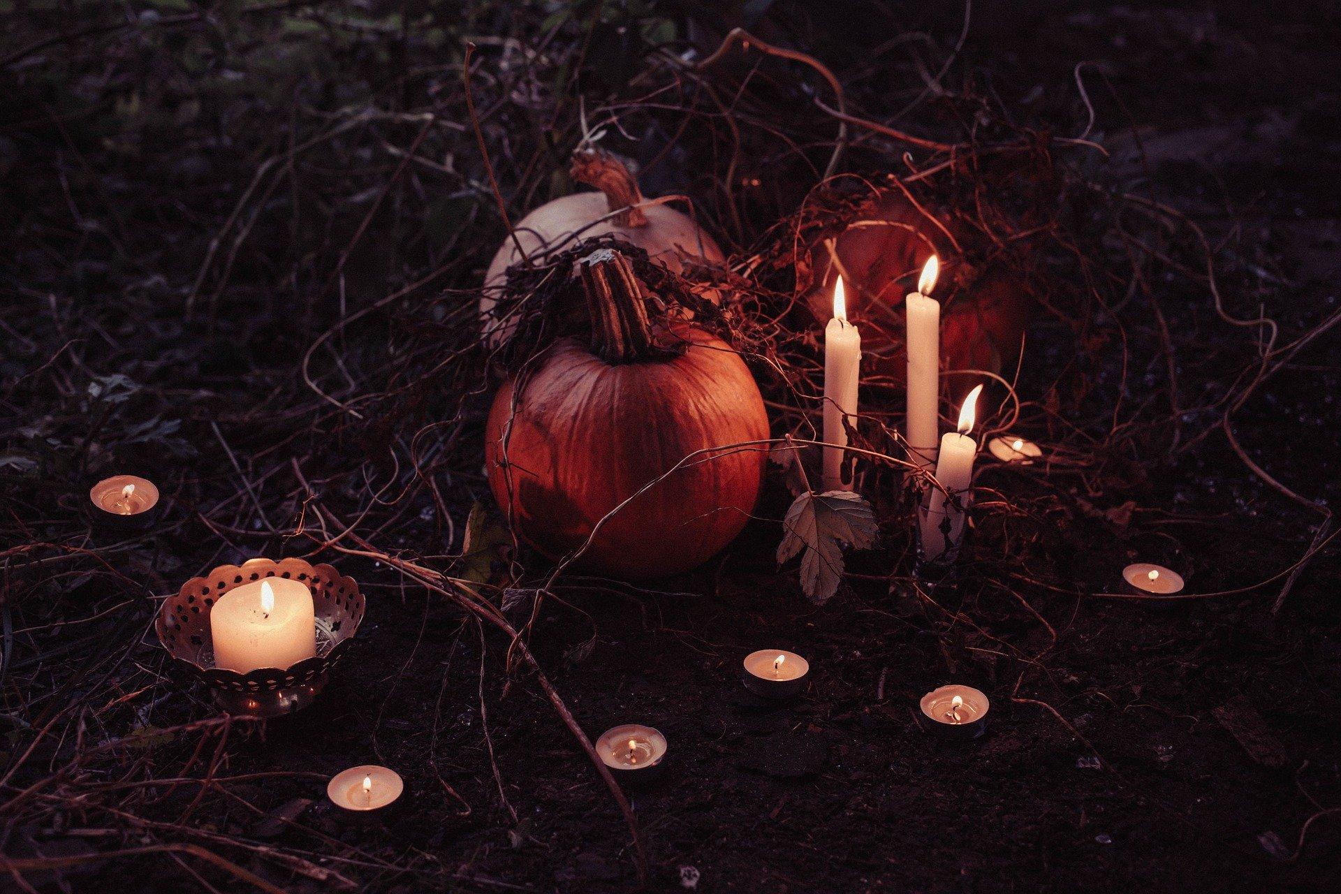 pumpkin-2594747_1920